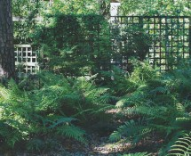 03 Native Shade Garden, Louisiana_2